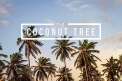 Food Review- The Coconut Tree