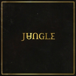Jungle review in Bristol - Anson Rooms Tuesday 4 November 2014