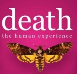 Bristol Museum - Death, The Human Experience
