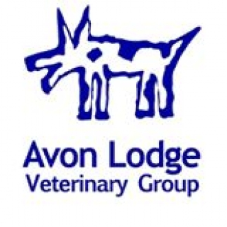 Avon Lodge Veterinary Clinic - Knowle