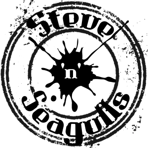 Steve'n'Seagulls at The Fleece in Bristol on 28 March 2017