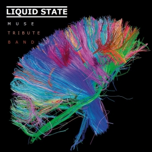 Liquid State at The Fleece in Bristol on 14 March 2017