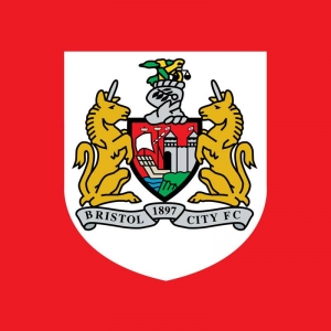Bristol City vs Birmingham City - 10th April