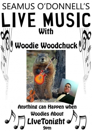 WoodChuck at Seamus O'Donnell's in Bristol on Thursday 24 October 2019