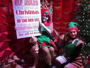 Elf Workshops @ The Galleries, Bristol