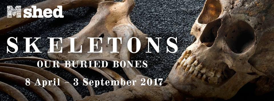 Bristol M Shed Skeletons