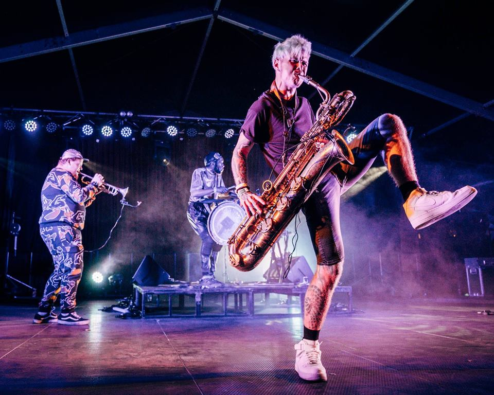 Too Many Zooz in Bristol
