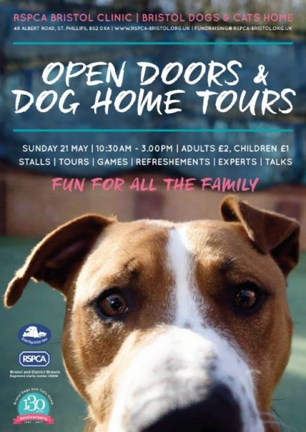 Bristol Dogs and Cats Home opens its doors for a special public event on Sunday 21st May 2017