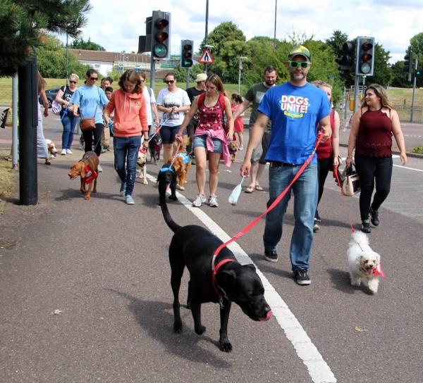 Bristol Woof Walk 2017 in aid of Guide Dogs - Saturday 29th July