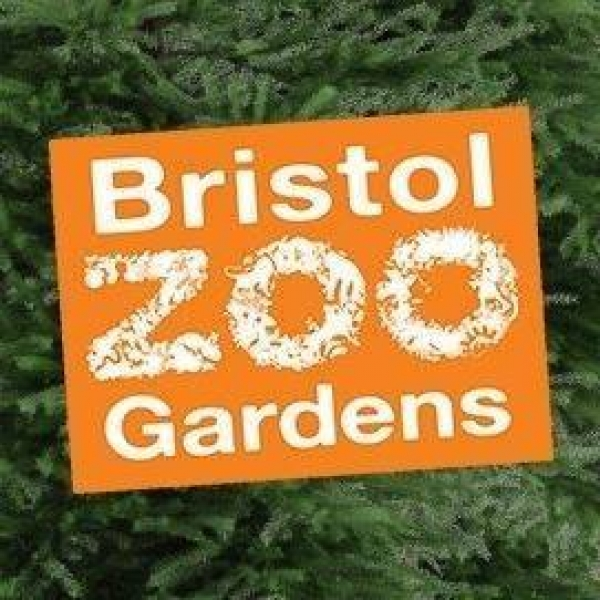 Living With Spiders at Bristol Zoo Gardens on Tuesday 14th November 2017