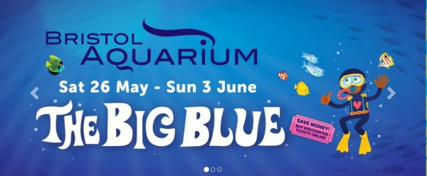 The Big Blue at Bristol Aquarium from Saturday 26th May to Sunday 3rd June 2018