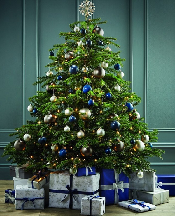 Christmas Trees Bristol