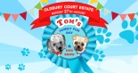 Tom's Family Fun Day & Dog Show | Sunday 27 August 2017