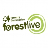 Westonbirt Arboretum announce Summer live music lineup as part of Forest Live 2018