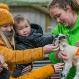 Enchanted Easter at Avon Valley Adventure & Wildlife Park until Monday 22nd April 2019