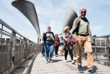 Bristol Walk Fest from Wednesday 1st to Friday 31st May 2019